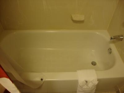 Bath Tub photo 2