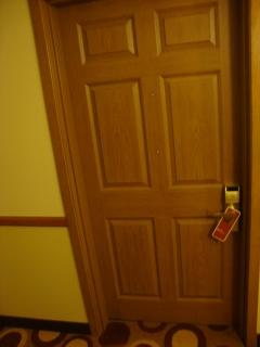 Door Design 6