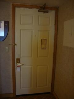 Door Design 9
