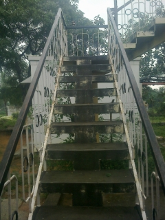 fishbone steps_1
