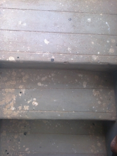 steps-made-of-cement
